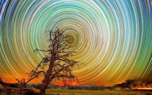 Lincoln Harrison_fotografo australiano